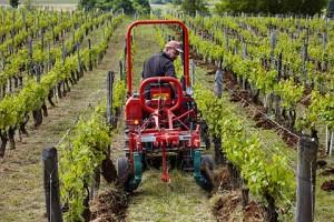 Jura vineyard ploughing