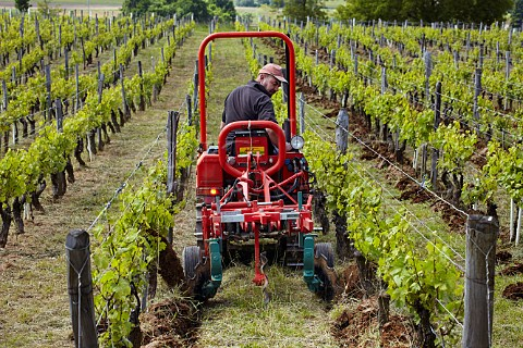 Jura vineyard ploughing