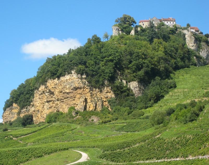 Château Chalon and its Jura vineyards