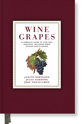 The source of all wine grapes